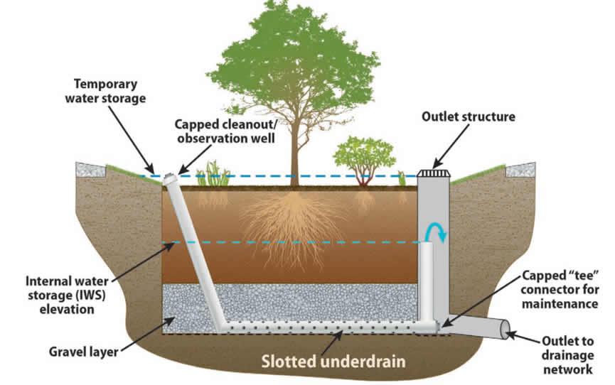 滞留池土壤分层