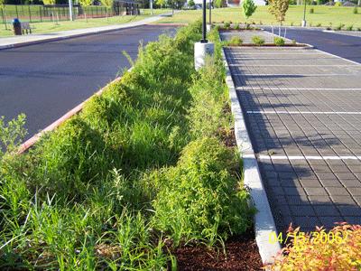 水质型植草沟设计资料清单
