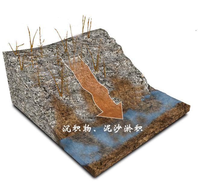 沉积物、泥沙淤积