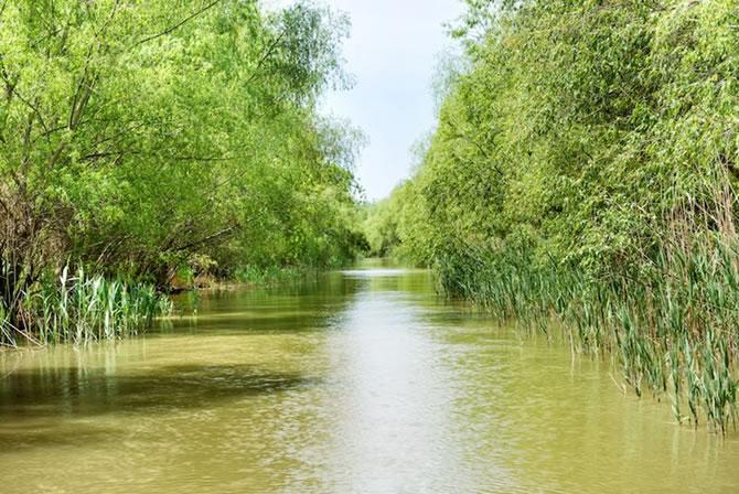 卵石、砾石河流的曼宁系数为0.05